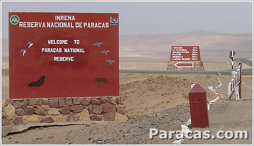 Welcome to paracas